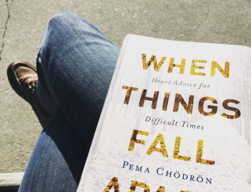 Book Club Pick: When Things Fall Apart