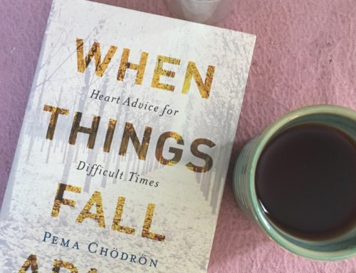 Book Club Discussion: When Things Fall Apart